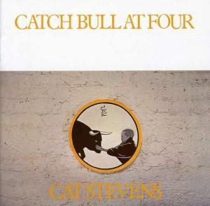 catstevenscatch