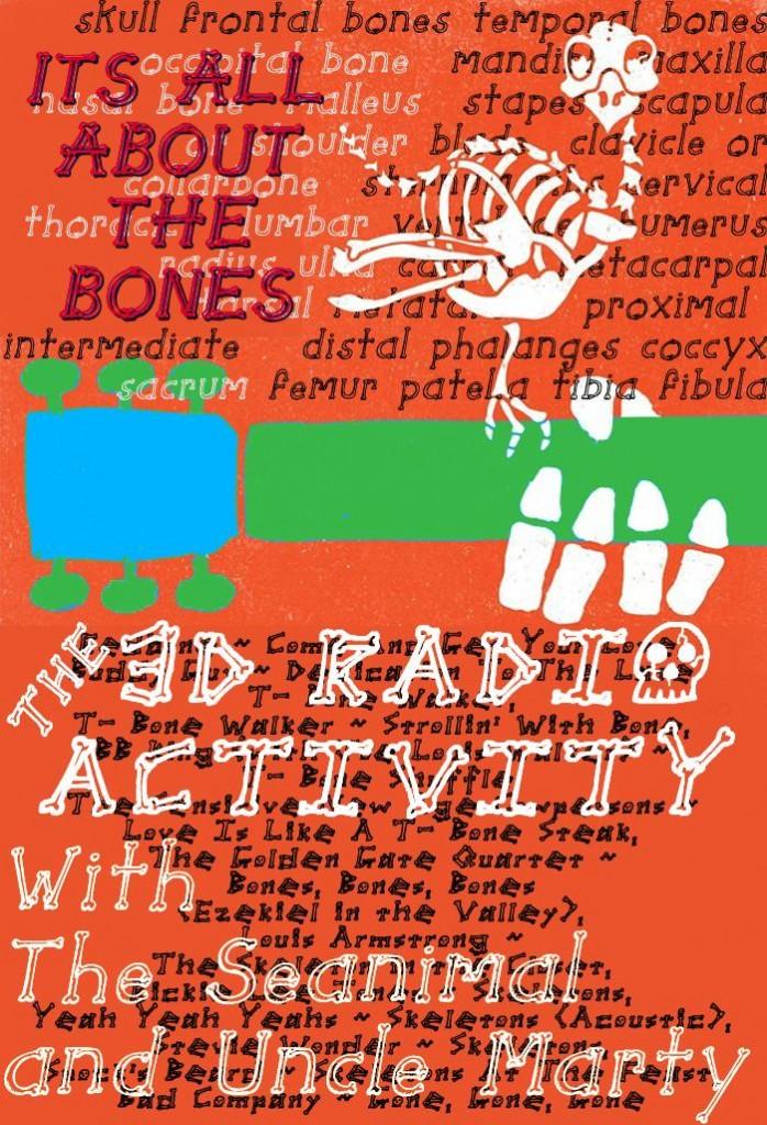 Bones In 3D
