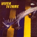 "Song Of The Day – ""Too Many Creeps"" by Bush Tetras"