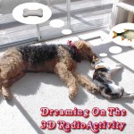 3dradio_20130714-DreamII