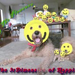 Sharing The Pleasure in The 3rd Dimension of Happy