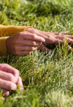 lawn-hands