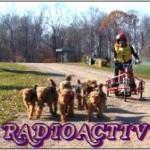 RadioActive Pull