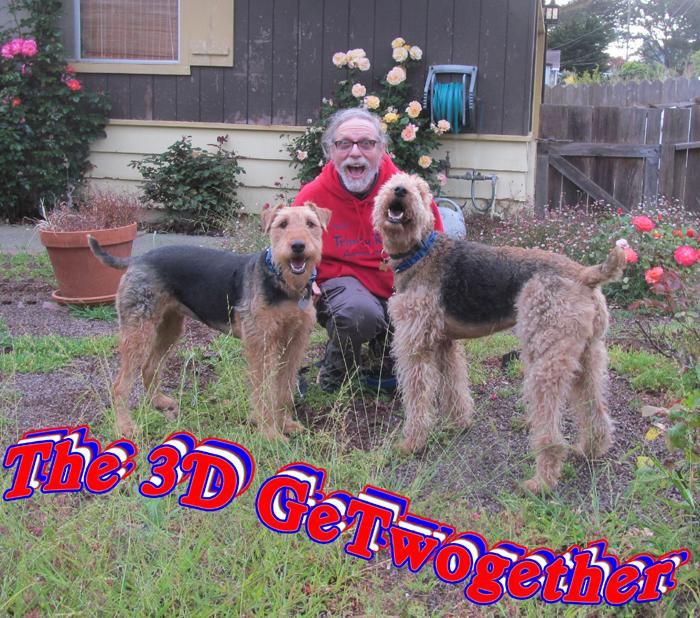The 3D GeTwogether