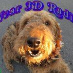 Near 3D Radio