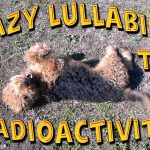 Lazy Lullabies Of The RadioActivity